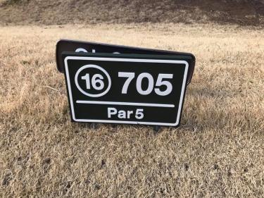 ゴルフ_1