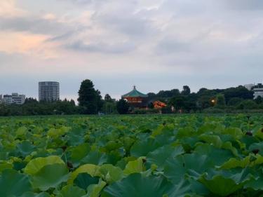 上野公園_03